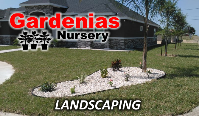 landscaping-company-zapata-tx