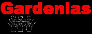 Gardenias Nursery - Zapata, TX