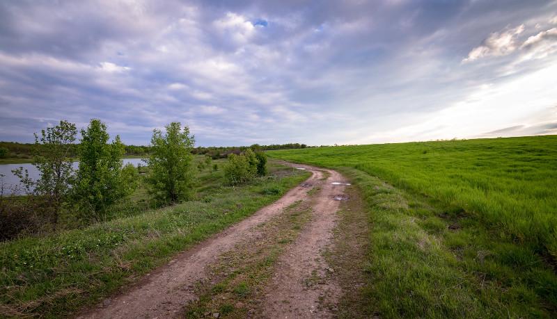 roadway-weed-control-shredding-texas
